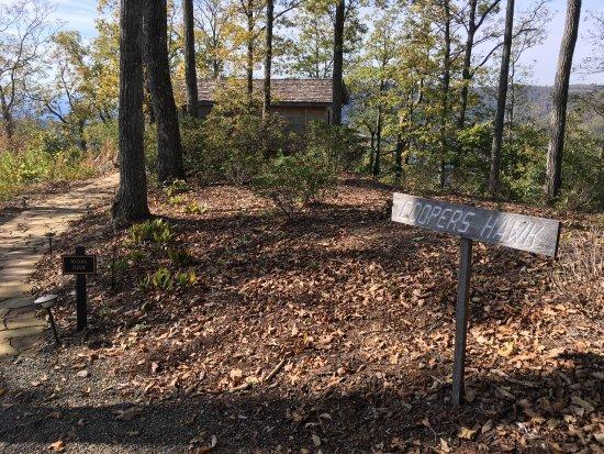 Meadows of Dan, VA: photo1.jpg