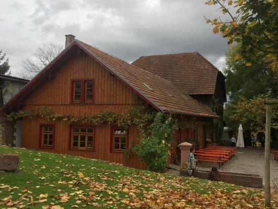 Ettenheim, Tyskland: Hummels Strausse