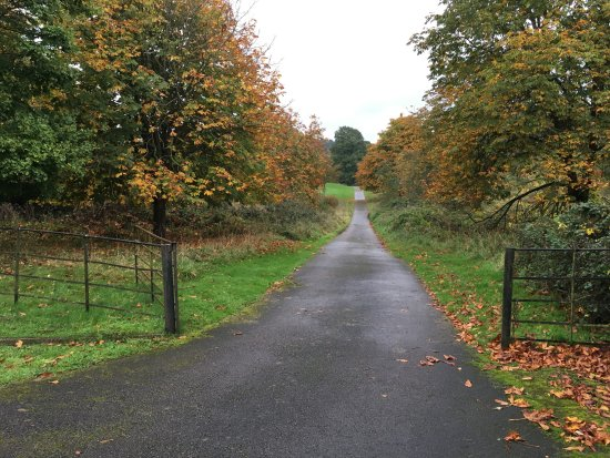 Monmouth, UK: Secluded private road to the Lodge