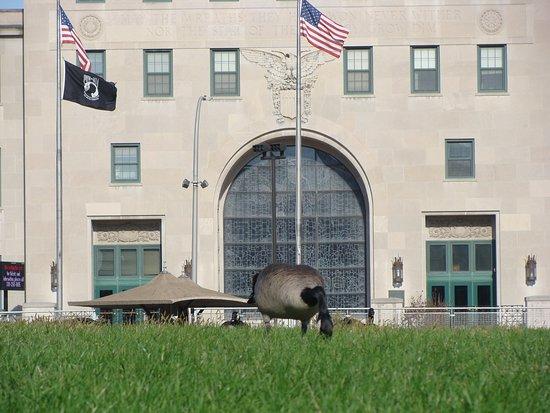 Cedar Rapids, IA: Goose on the island grounds.