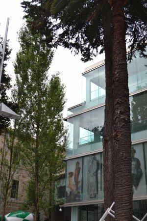 Museo de Pontevedra: Pontevedra