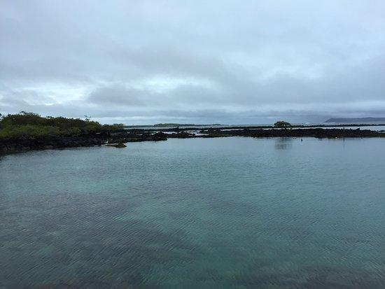 Concha de Perla: Endroit pour le snorkeling