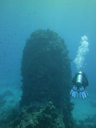 Funny Divers Diving Center: Dive master Nasser soon on his back.