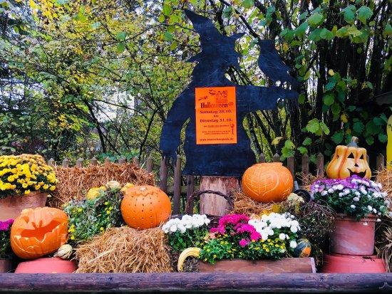 Cafe Restaurant Jagerwinkl: Wir feiern Halloween 🎃 vom 28.10-31.10
