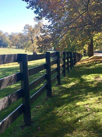 Paris, KY: Claiborne Farm