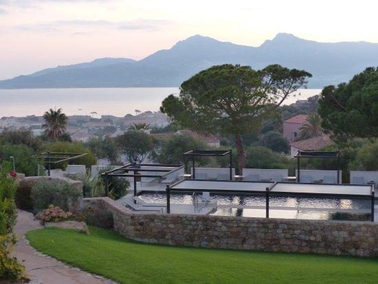 Le bar ext rieur photo de la villa calvi tripadvisor for Piscine 75012