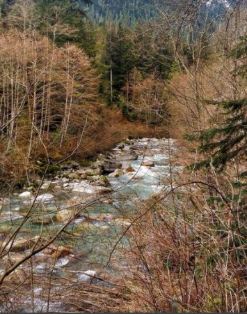 North Vancouver, Canada: Lynn Headwaters