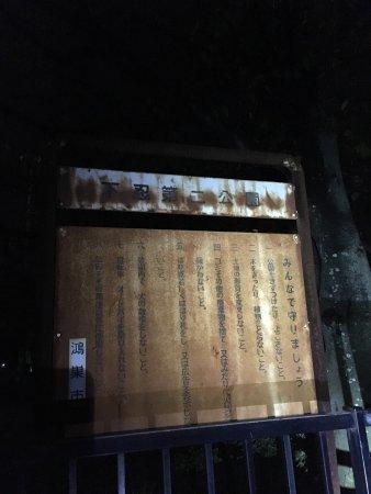 Shimooshi Park 2