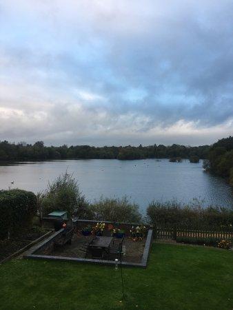 Ringwood, UK: photo3.jpg