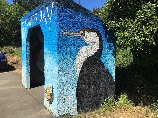 Otago Peninsula: photo5.jpg