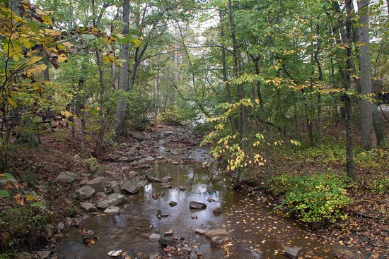 Berkeley Springs, WV: Creek along the Ridge Trail