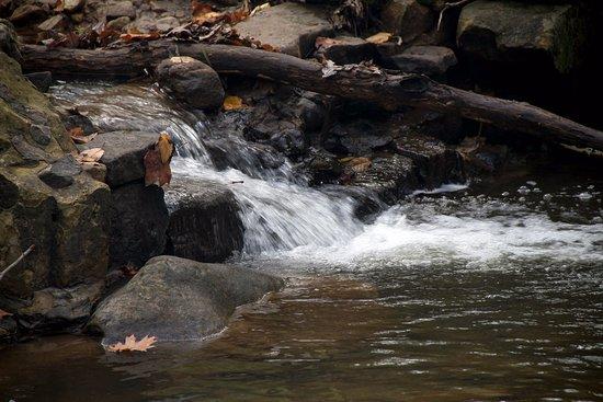 Berkeley Springs, WV: Water cascading over rocks