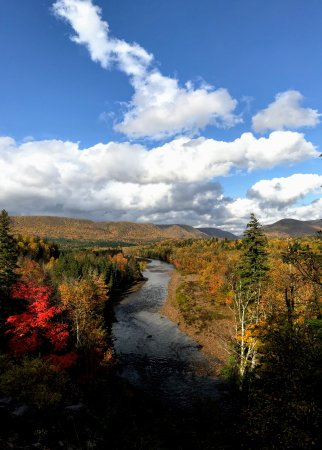 Margaree Forks, Canadá: Margaree river