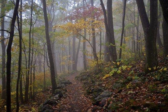 Todd, Северная Каролина: Summit Trail