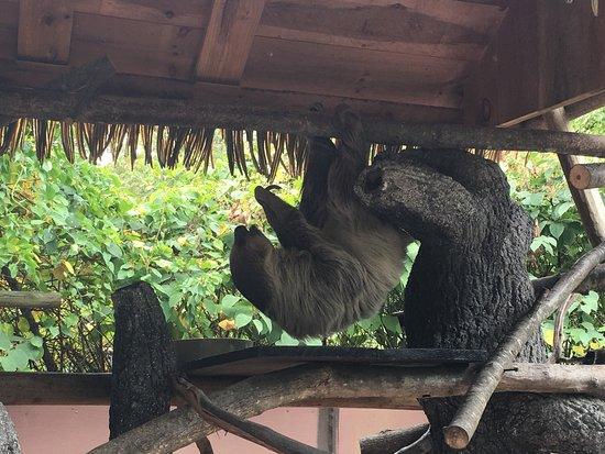 Southwick's Zoo: photo0.jpg