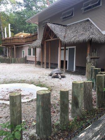 Southwick's Zoo: photo1.jpg
