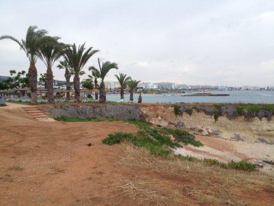 Constantinos the Great Beach Hotel: Вид на  бухту Фигового дерева