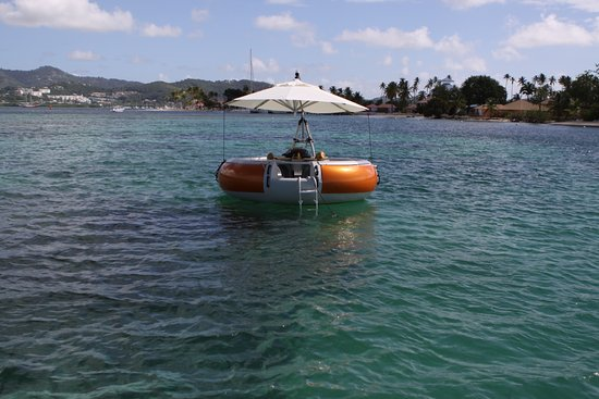 Le Marin, Martinique: BBQ DONUTS BOAT on clear water 3