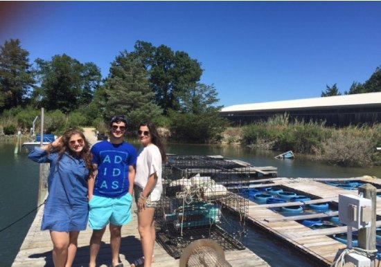 Southold, Nowy Jork: Oyster Farm Tour