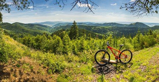 Wypożyczalnia Rowerów Górskich | Góry Sowie