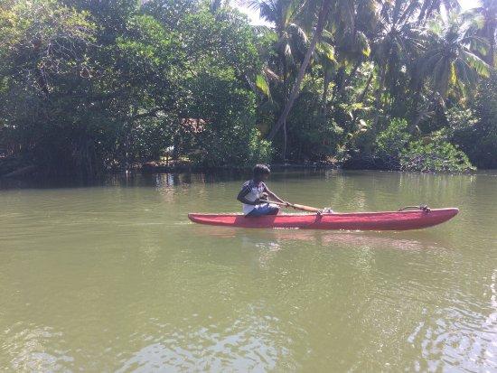 Balapitiya, Sri Lanka: photo0.jpg
