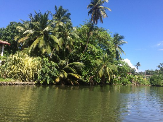 Balapitiya, Sri Lanka: photo1.jpg