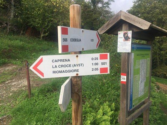 Чинкве-Терре, Италия: Path 501 from Castè