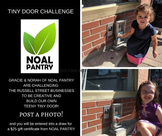 our Smiths Falls Tiny Door challenge!
