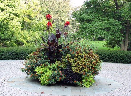 Cantigny Park : Flowers at the Park.