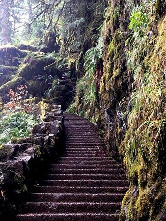 Sublimity, Oregón: Steps to an upper fall.