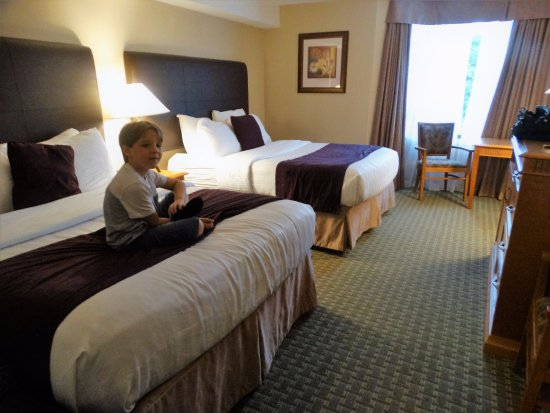 Cambridge, Canadá: The rooms are clean and nicely furnished.
