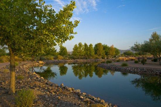 Chandler, Arizona: Cool Arizona Morning
