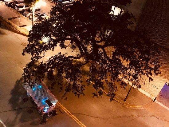 Hilton Garden Inn Savannah Historic District: photo0.jpg