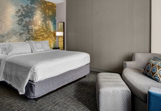 Carrollton, GA: King Guest Room
