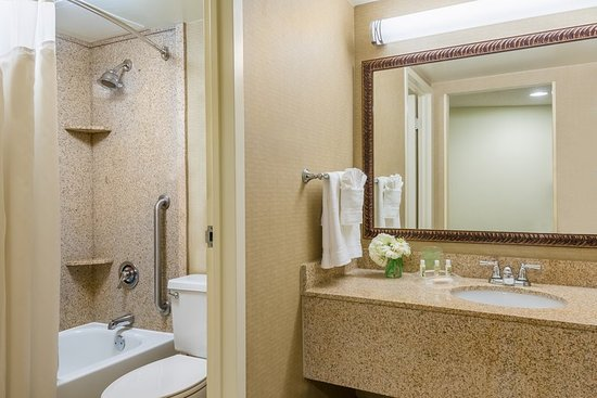 Holiday Inn - Mobile Downtown/Historic District: Standard Guest Bathroom