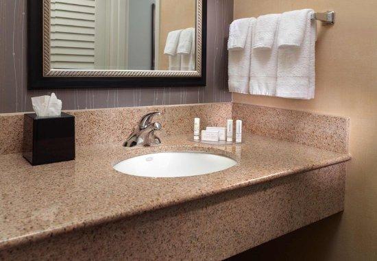ดุลูท, จอร์เจีย: Suite Bathroom Vanity