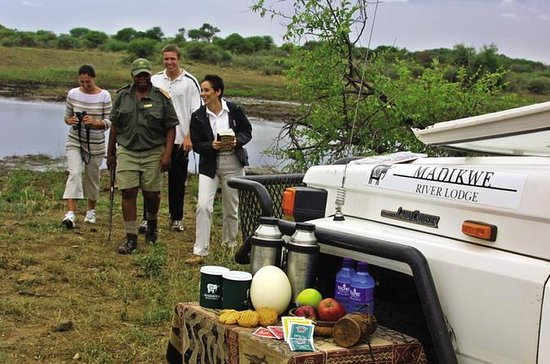 3night-4days Madikwe River...