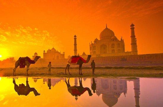 Sunrise Taj Mahal Tour from Jaipur by Car