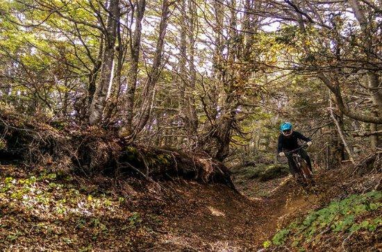 Patagonia Small Group Mountain Bike