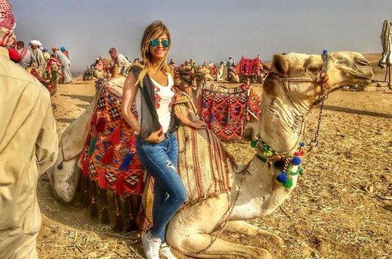 Giza pyramids and one hour camel ride