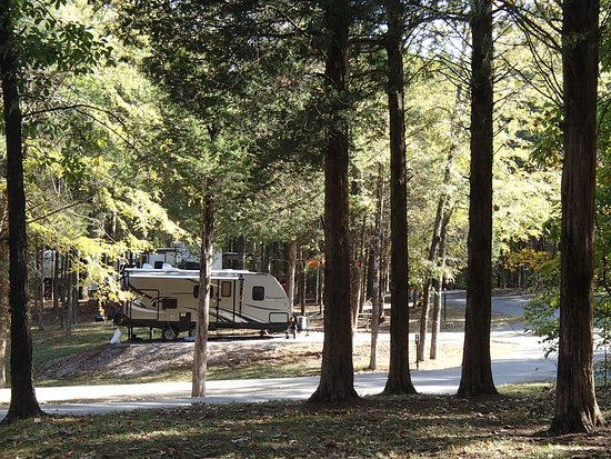 Golconda, IL: Campground with paved sites (not all level, but paved)