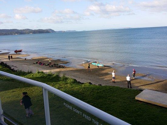 Things To Do In North Island New Zealand Tripadvisor