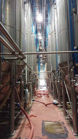 Yeast process - Picture of Big Rock Brewery, Calgary