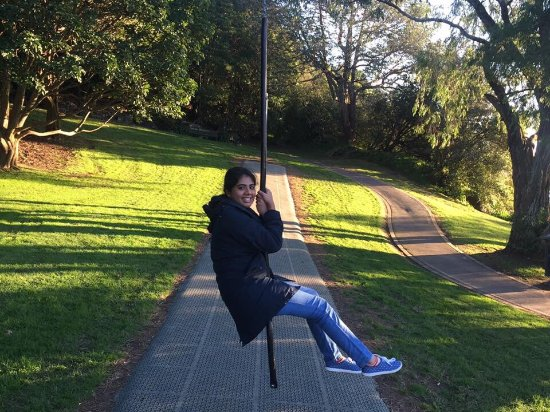 Rotorua Canopy Tours Trip Advisor