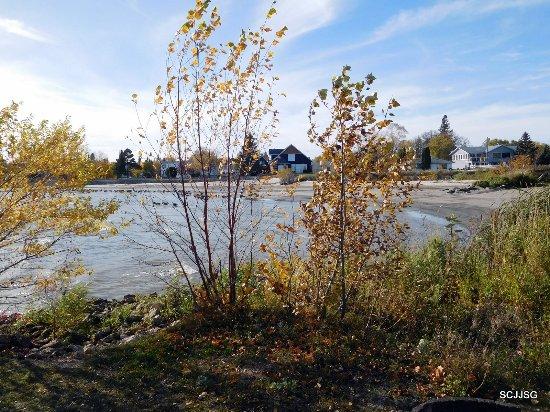 Gimli, Canadá: Lake Winnipeg's shores line