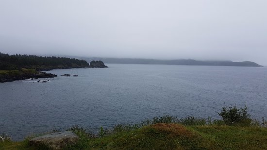 Ferryland, Καναδάς: View from outside the restaurant