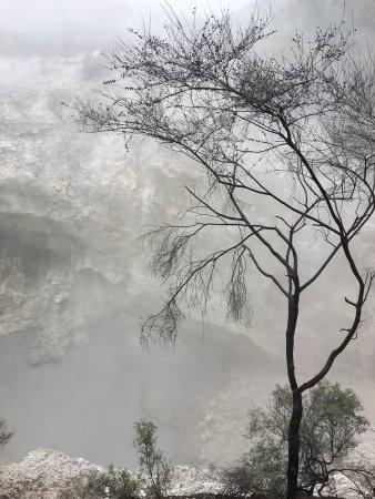 Wai-O-Tapu Thermal Wonderland: photo3.jpg