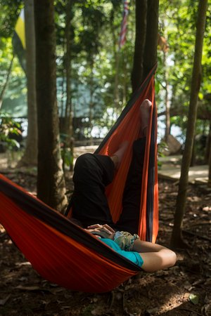 Gerik, Malaysia: Relax in a hammock, sleep or read a book listening to the sounds of the forest.