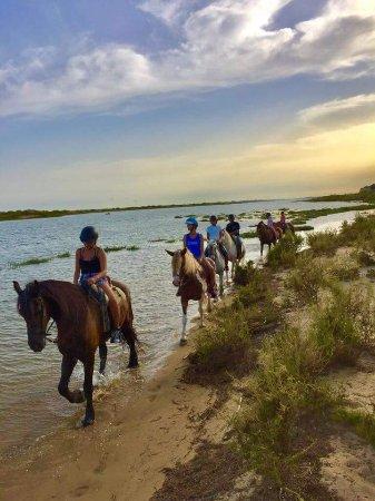 Tavira Equestrian Tourism