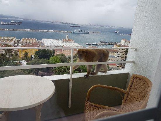 Rock Hotel Gibraltar: IMG-20171018-WA0003_large.jpg